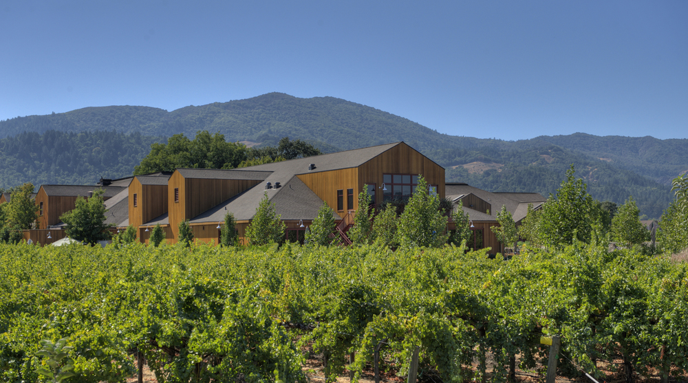 Cakebread Cellars & Their Surprising Relationship with Photographer Ansel Adams: Pursuitist Q&A