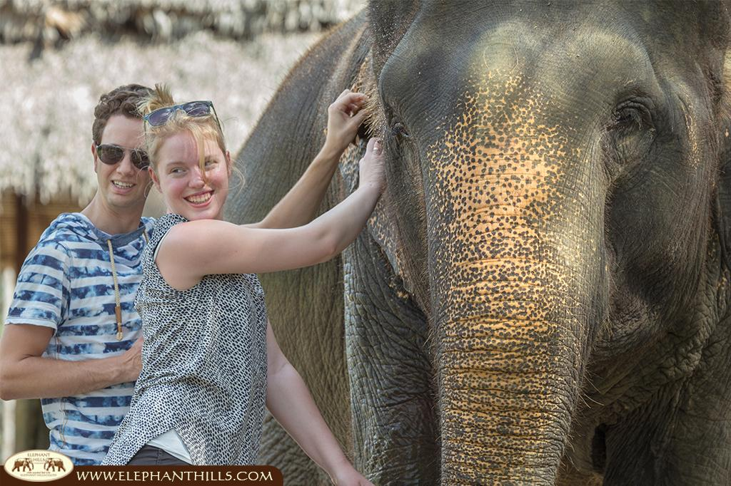 Elephant Hills: Vacation with Pachyderms in Thailand