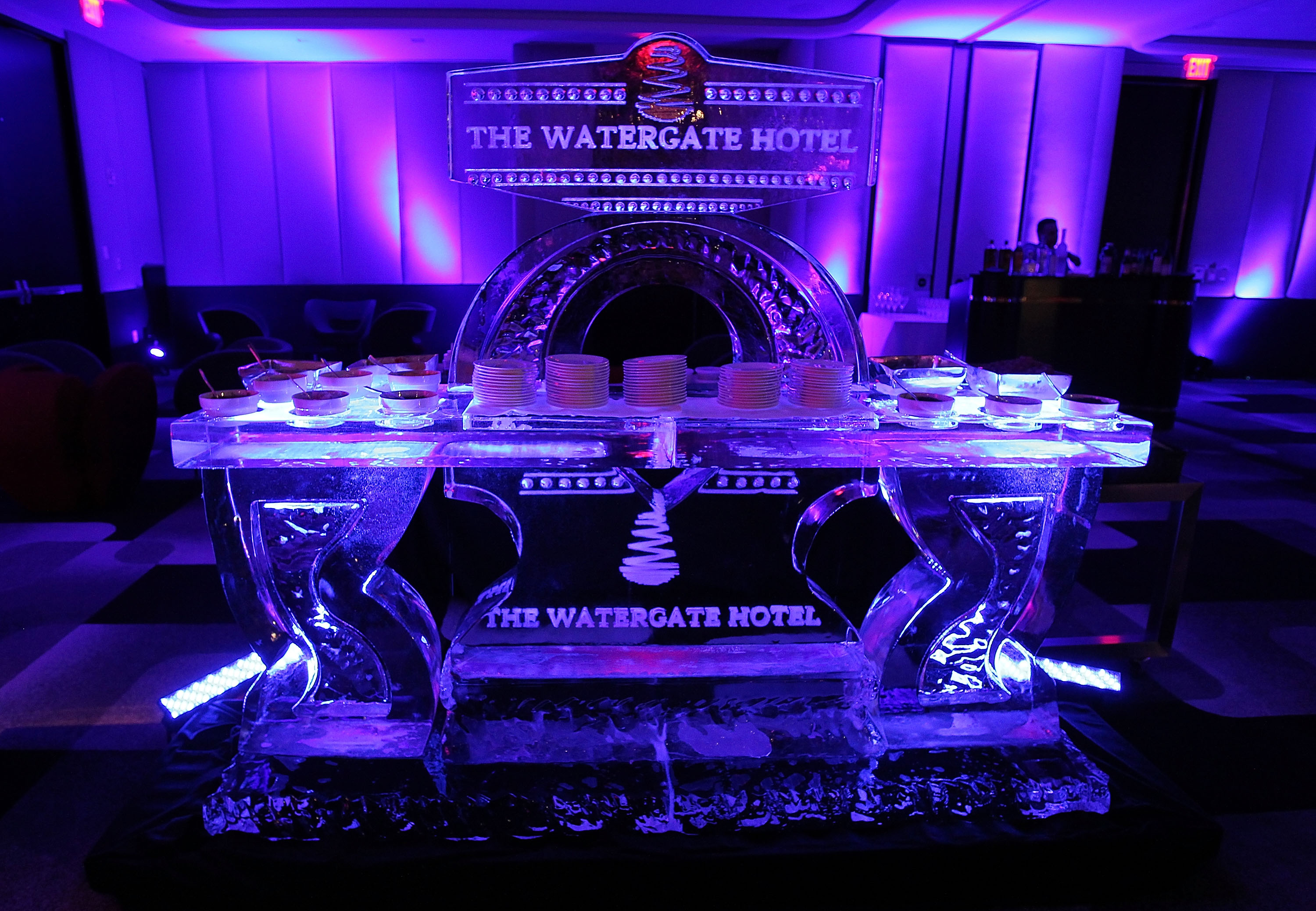 WASHINGTON, DC - JUNE 14:  Ice sculpture at the grand reopening party of the iconic Watergate Hotel on June 14, 2016 in Washington, DC.  (Photo by Paul Morigi/Getty Images for The Watergate Hotel)