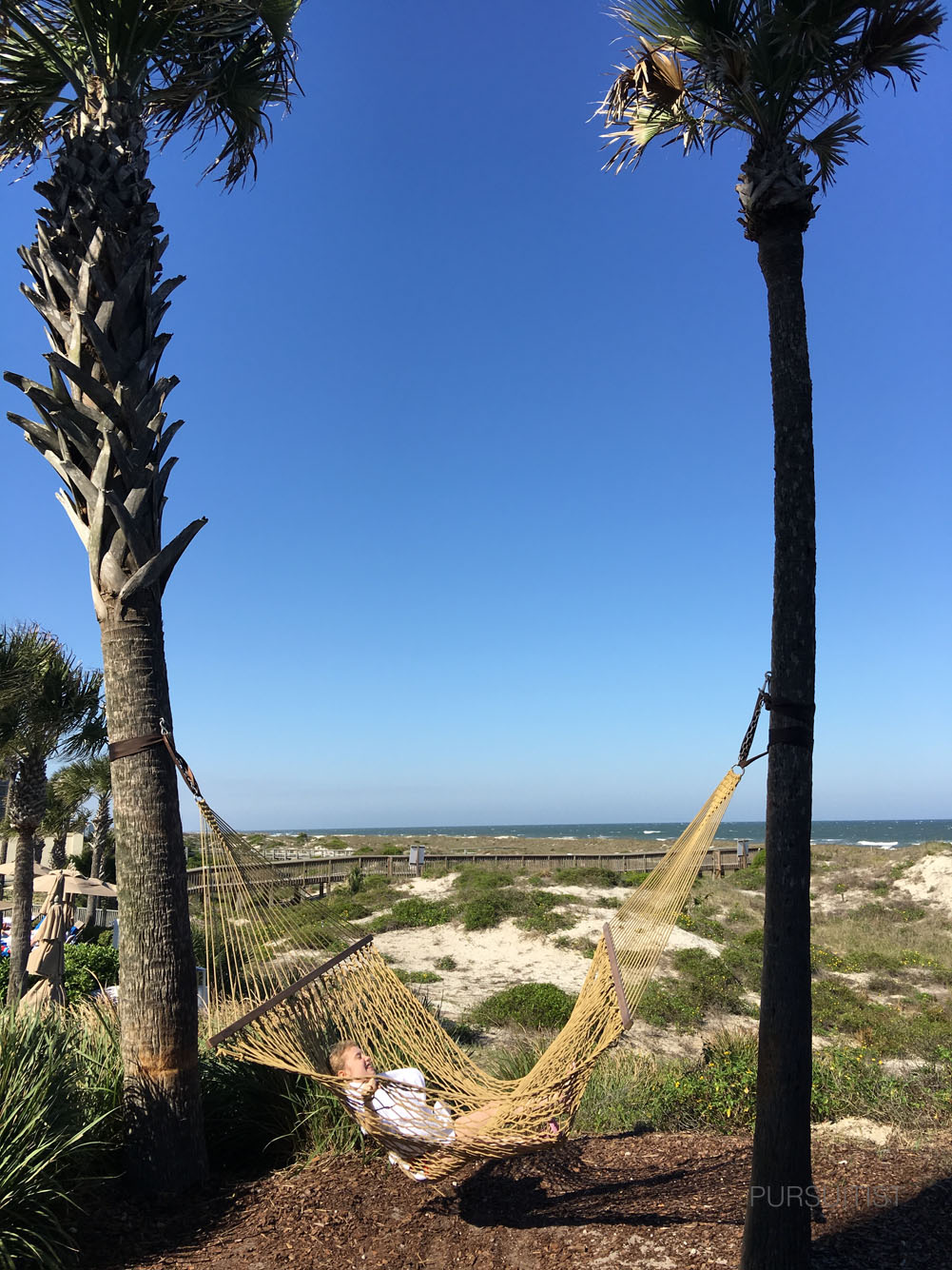 Ritz-Carlton, Amelia Island Pursuitist11