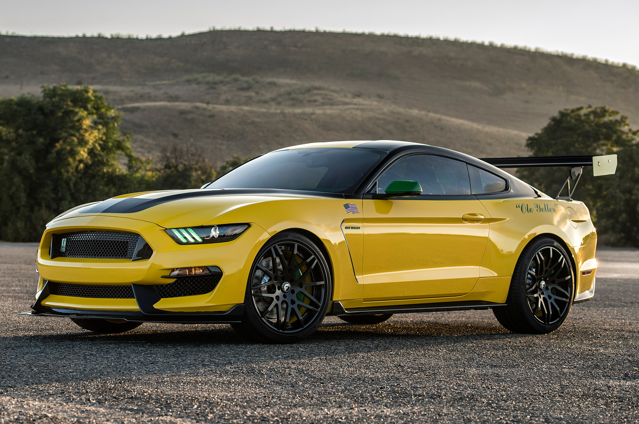 Shelby GT350 Mustang: Custom U0027Ole Yelleru0027 Model Sells For $295,000    Pursuitist