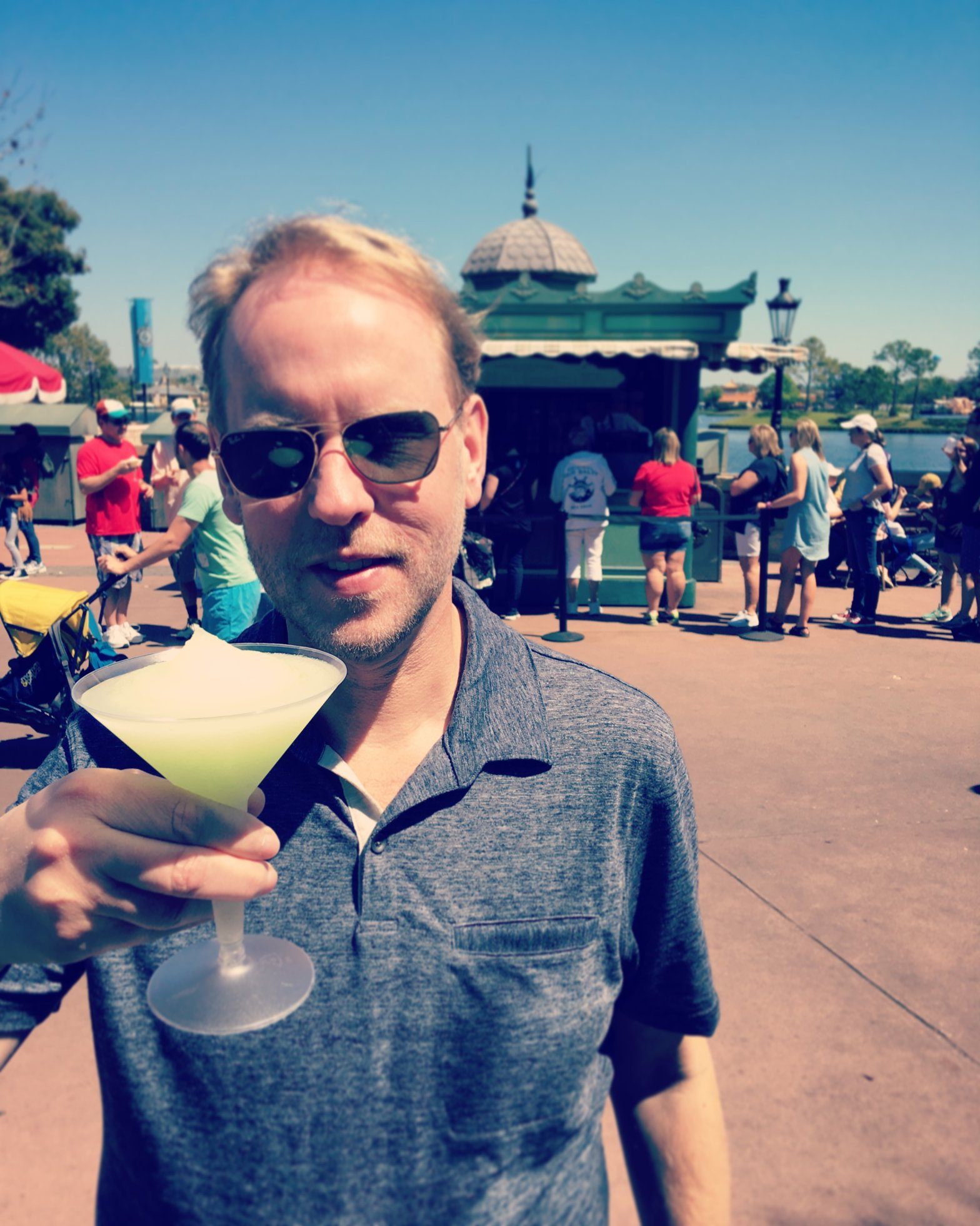 Disney's Grey Goose Slush Recipe